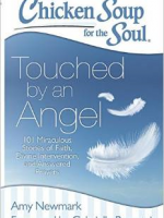 Chicken Soup for the Soul - Touched by an Angel